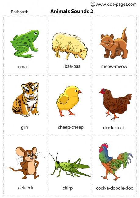 Animals Sounds 2 flashcard
