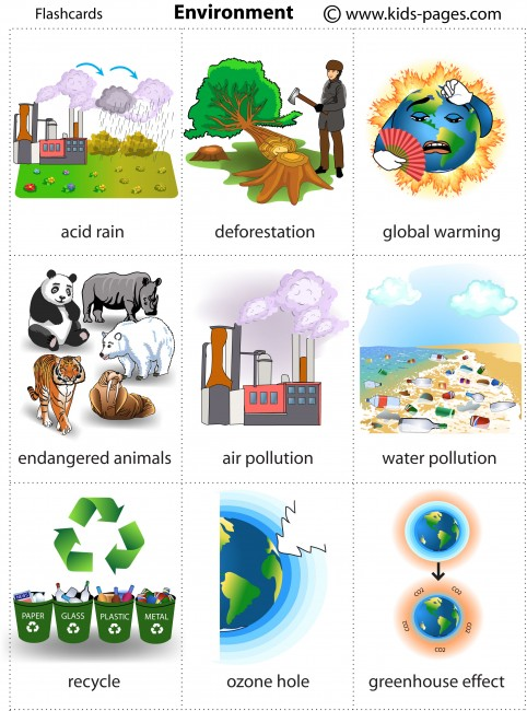 Environment Videos For Kids