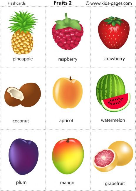 Grapefruit printable pdf versions small size 3x3 medium size 2x1
