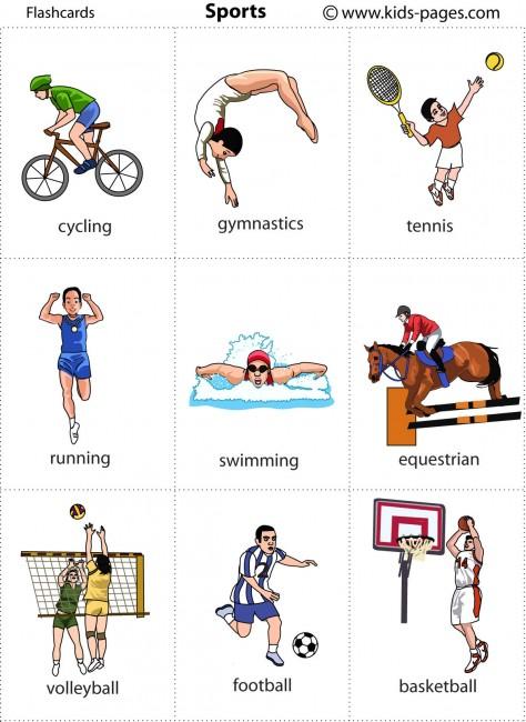 Sports flashcard