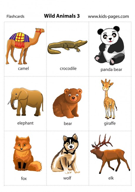... Animals HD - Download MP3 and, Flash cards for children - Wild Animals
