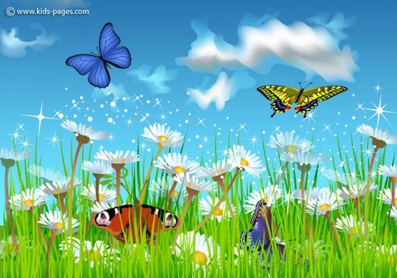 Summer Sky with Butterflies