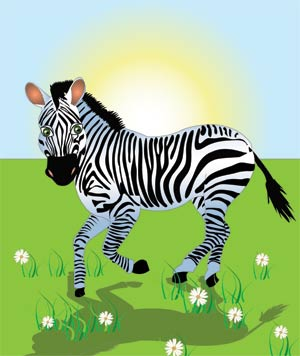 Kids Pages - Zebra