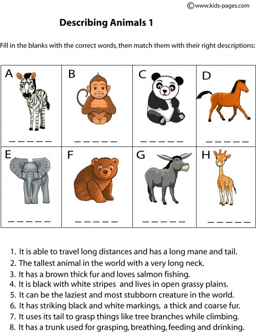 children essays wild animals Posted in sample essays this is a sample essay on wild animals on whether it is okay to have them children and wild animals the rediscovery of the wild.