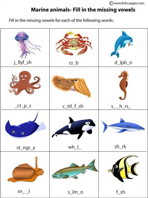 Ocean Animal Coloring Pages For Preschoolers