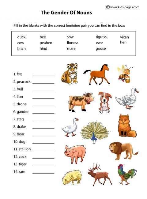 animal worksheet new 572 animal homes worksheet grade 2. Black Bedroom Furniture Sets. Home Design Ideas