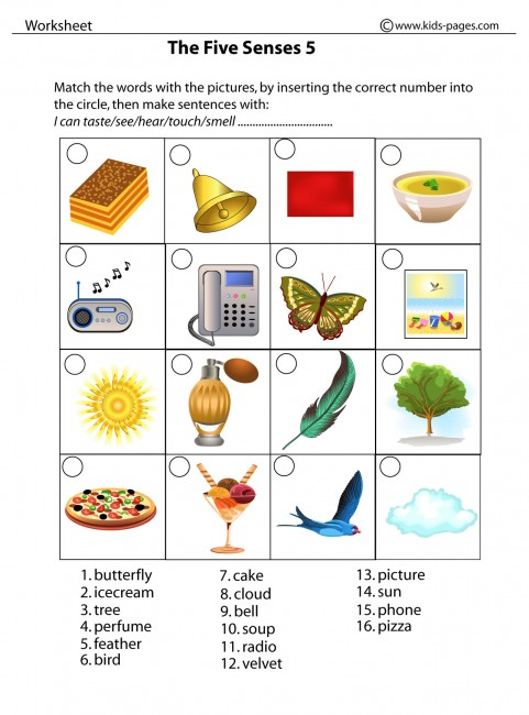 math worksheet : webquest we have 5 senses created with zunal webquest maker : 5 Senses Kindergarten Worksheets
