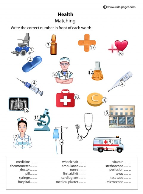 health matching worksheet health index printable worksheet pdf version