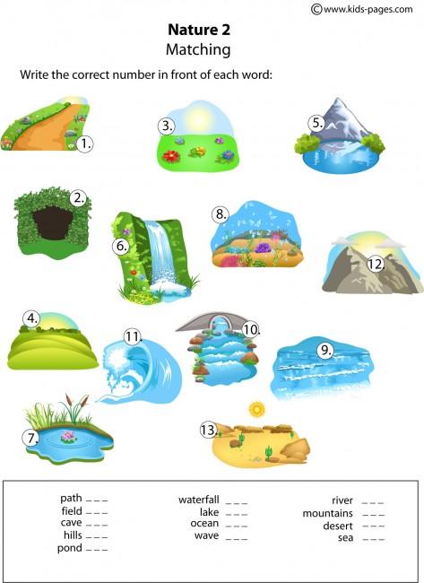 Nature Matching 2 Worksheet