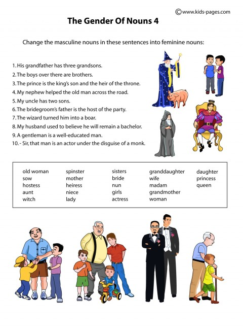 The Gender Of The Nouns Worksheet
